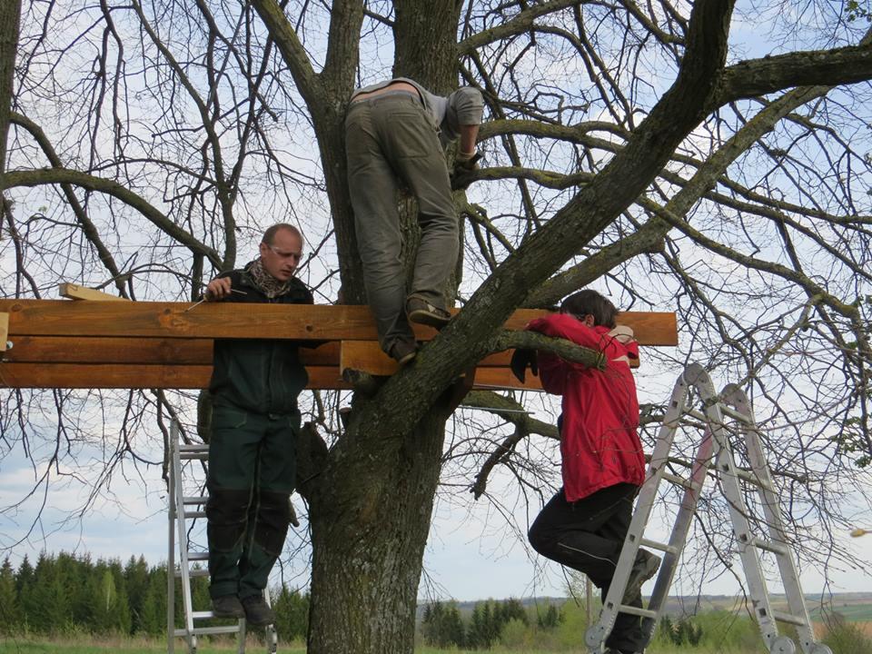 Trys žmonės stato medį namelyje